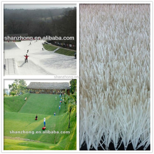 synthetic grass land skiing