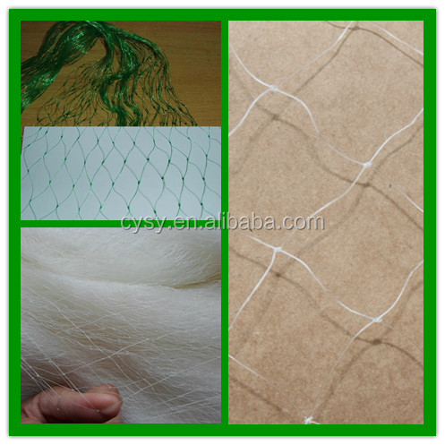 new design high quality logical price bird netting 50' x 50',bird trapping net,mist bird net