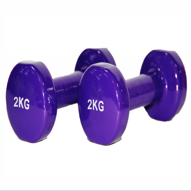 Colorful Free weight Fitness PVC Coated Cast Lron Hex Vinyl Dumbbells