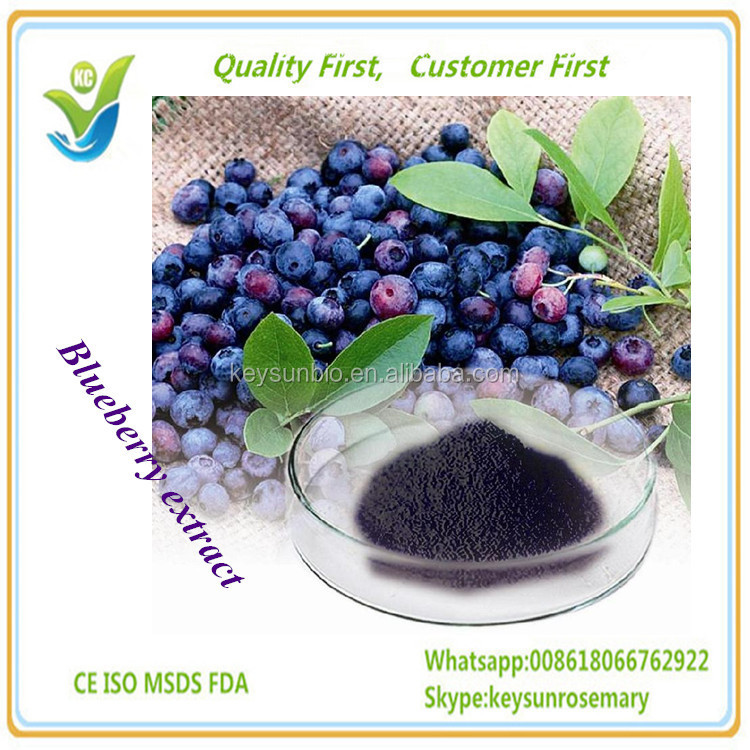 100% natural Blueberry Extract/Bilberry Extract /plant extract