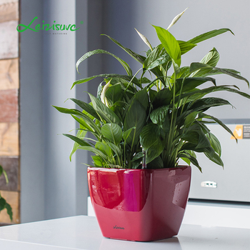 Alibaba.com & Big Size Outdoor Abs Plastic 4 Inch 6 Inch 8 Inch Flower Pots Painting Designs - Buy Smart Pot GardeningDecorative Garden Stone Flower PotFlower ...