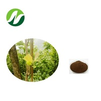High Quality China Factory Pure Natural Magnolia Bark Extract Magnolia Officinalis with Honokiol and Magnolol