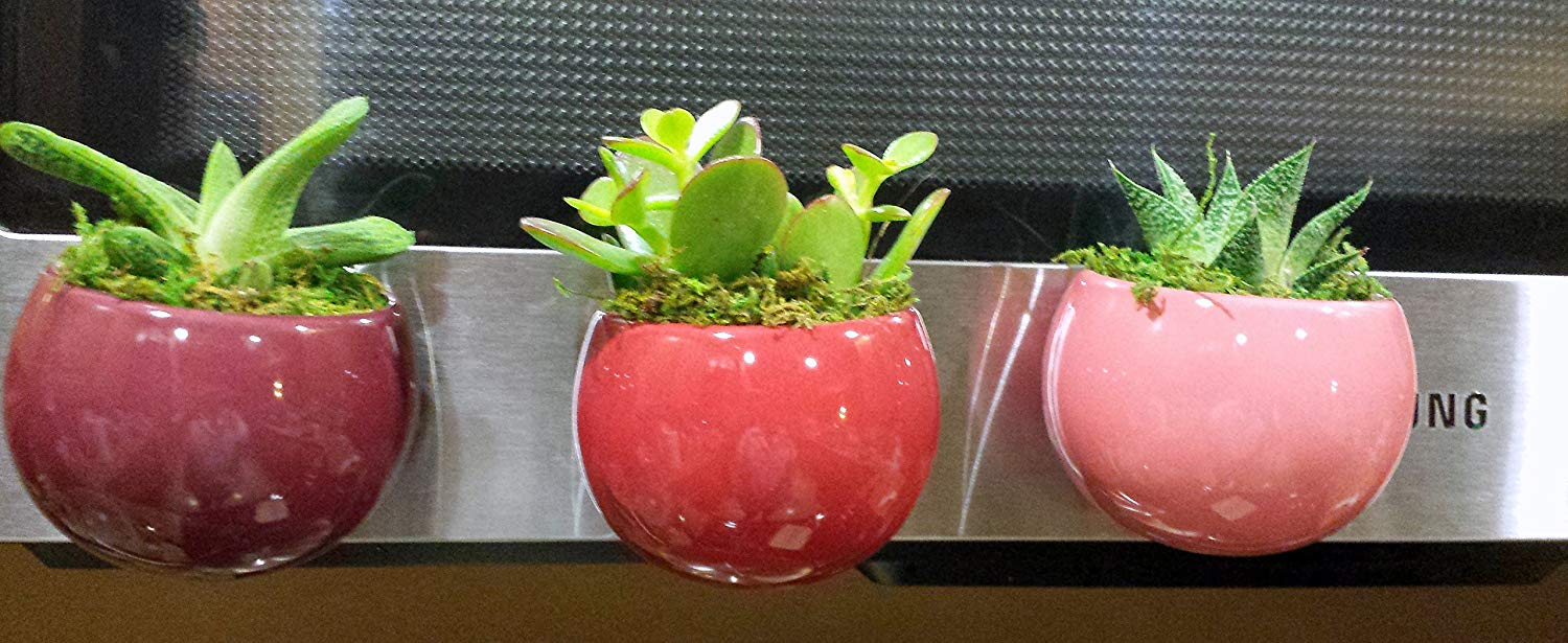 Set of 3 Purple, Red and Pink Magnetic Magnetized Geometric Succulent Planters