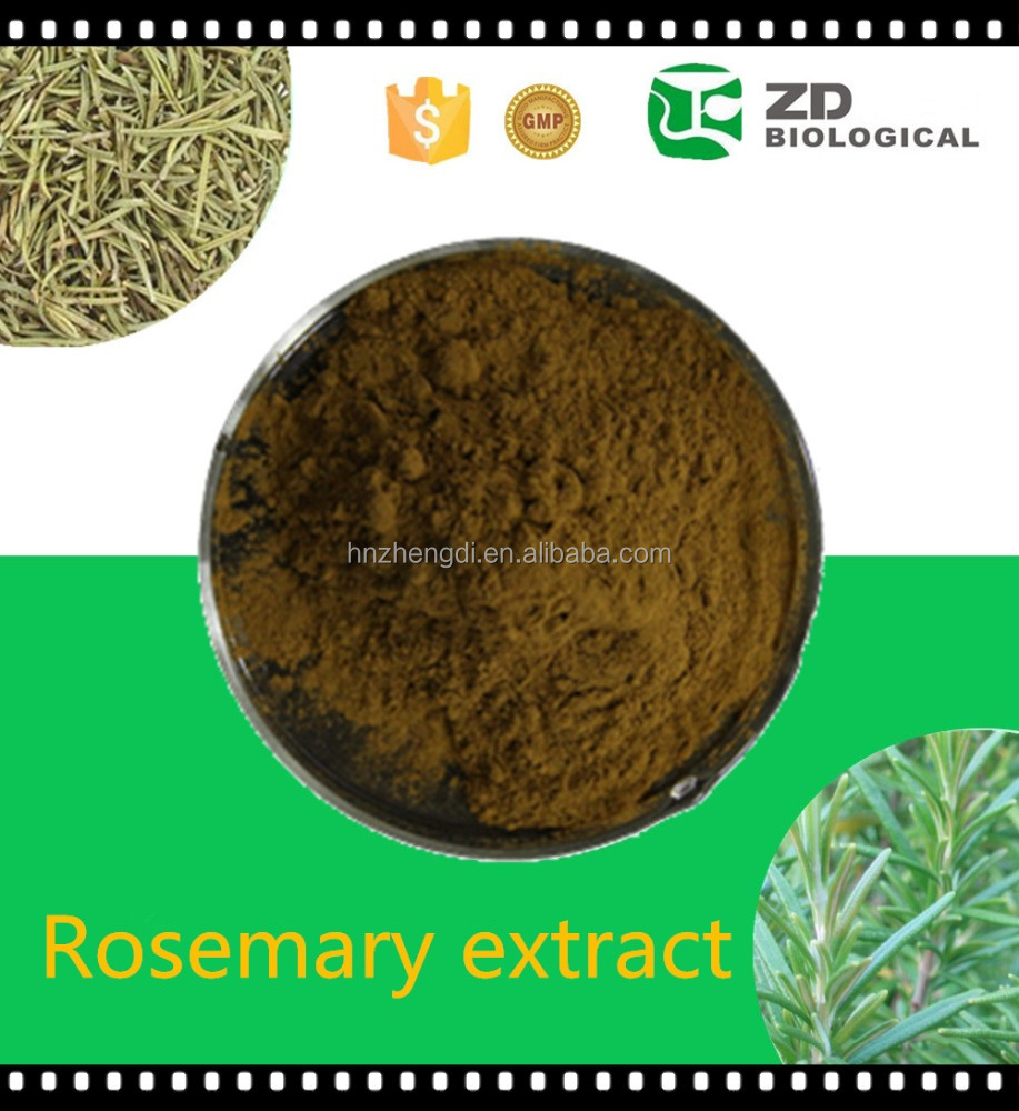 Herbal Rosemary Extract Powder Bulk Powder