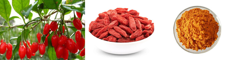 Новый урожай, сушеные органические ягоды годжи, Натуральные сушеные китайские Ягоды Годжи из Нинся, без пестицидов, 2019