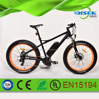 off road electric fat bike chinese electric bike 48v 1000w
