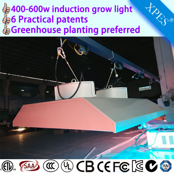 Best for grow seedling design induction lamp best full spectrum induction grow lights on tge market replace100w indoor plant gro
