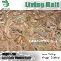 Fresh Live Blood Worm Fishing Bait Green worm