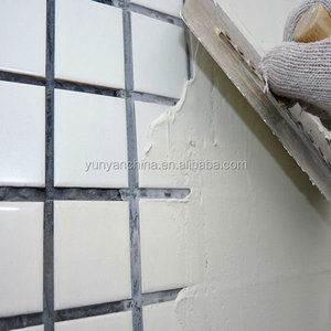 Repair Wall finished Coating Wall Putty