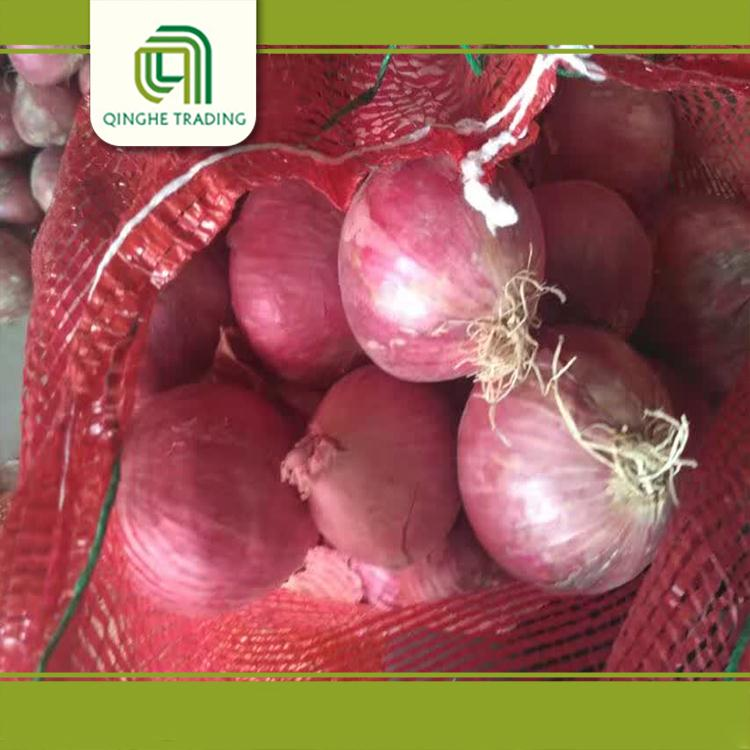 lowest price fresh red onion for wholesales