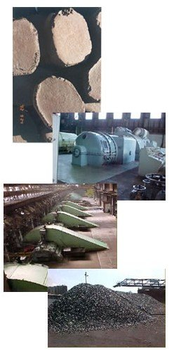Lignite (Brown Coal) Briquettes