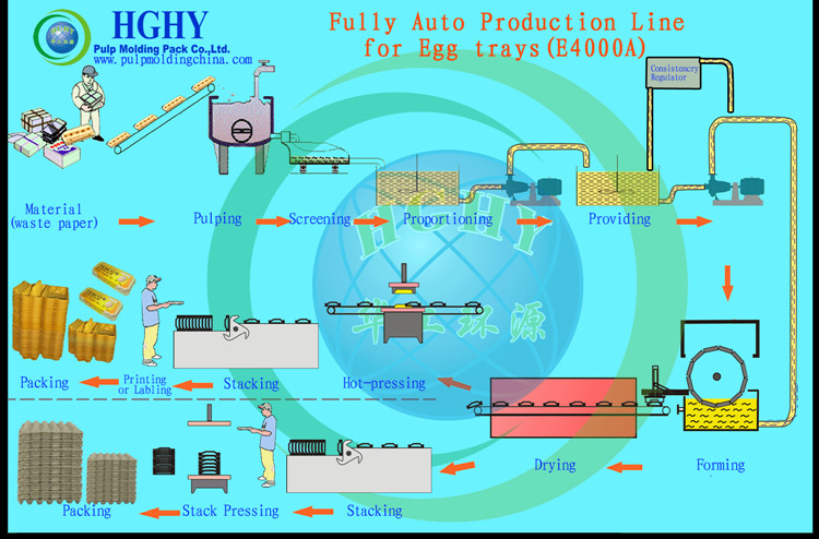 Quality Assurance New design egg tray forming machine paper pulp production line