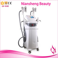 CE approval radio frequency lipo laser vacuum cryolipolysis slimming beauty machine/cryolipolysis machine korea