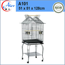 birds in cage parrot in cage
