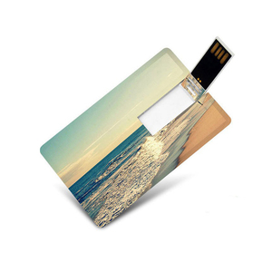 OEM Plastic Business card USB Flash Drive Pendrives Customized Or Gifts