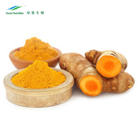 China Supplier New Products Turmeric Root Extract Curcumin 99% for yellow powder