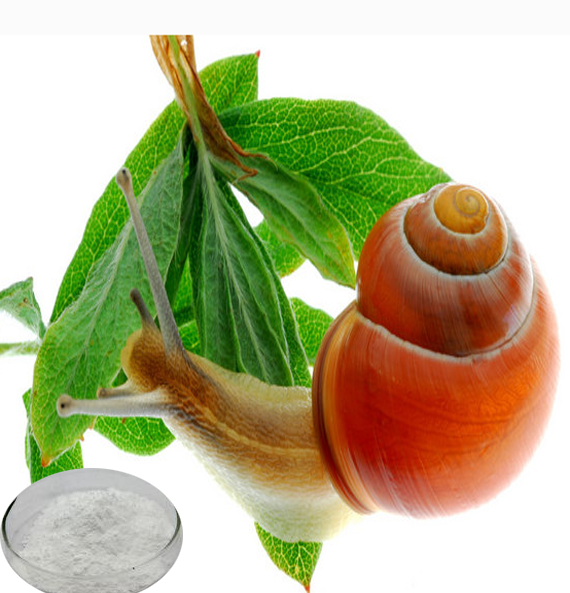 100% water souble pure animal protein snail extract