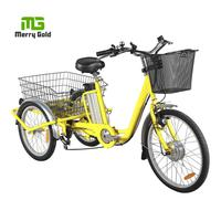 2018 Hot sale electric tricycle for adults 3 wheel electric city bicycle