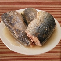 125/80g canned food factory, Canned Jack Mackerel in Tomato Sauce with HALAL, HACCP, ISO