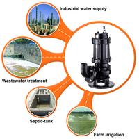 Underwater Water Pump Use Japanese Imported Nsk Bearing Pump Pumps ...