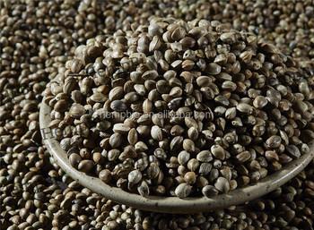 Семена конопли даром похожие на коноплю