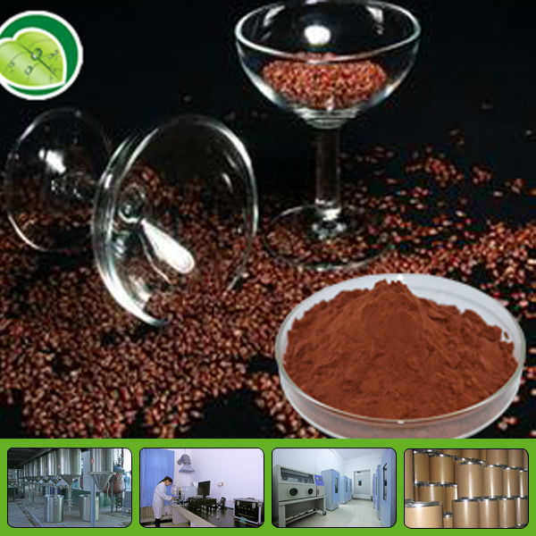 Natural grape seed extract/Proanthocyandin 40%-95%