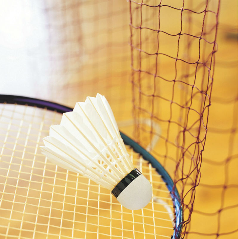 badminton net with competitive price
