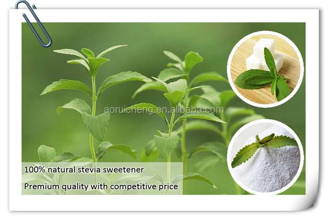 Wie die Moringa-Pflanze bereit ist, Gewicht zu verlieren
