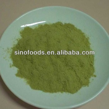 100% pure powder Best quality dehydrated celery powder