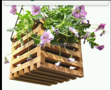 Cedar Rased Garden Planter - Herbs Flowers Seeds Vegetables Patio Garden