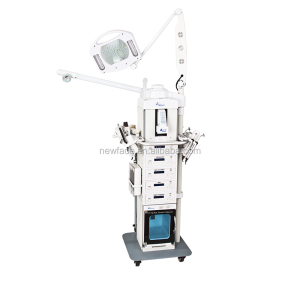 2015 New Arrival 19 in 1 Multifunction Facial Skin Care Machine