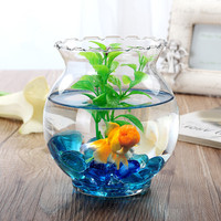 FALAJA glass jar vase for home decoration water planter vase
