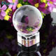 2015 New Arrive Best quality Crystal souvenir, globe crystal wedding favors,crystal crafts CG041