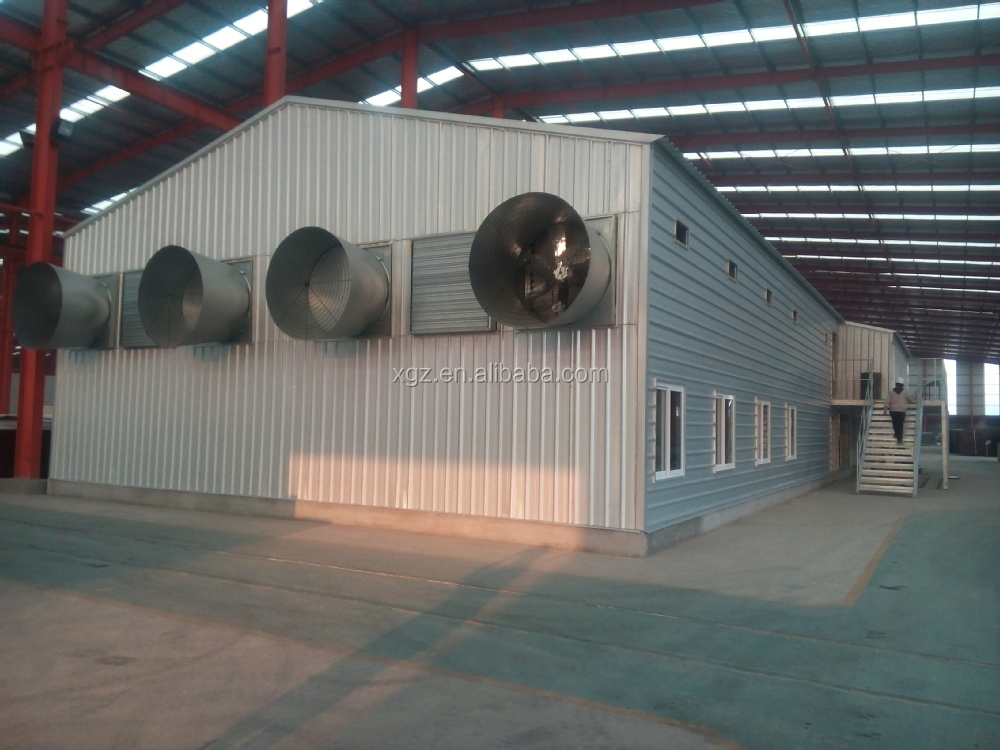 steel structure low cost chicken layer house shed poultry for broilers design