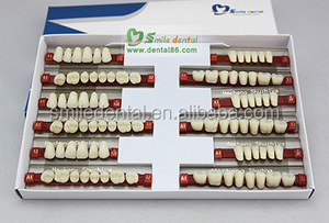 Professional Dental Supply dental full acrylic denture