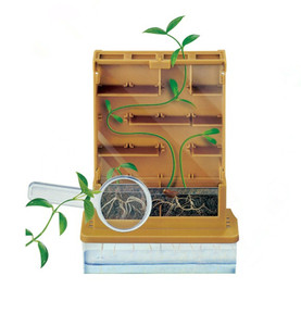 STEM and science kit and education series plant war maze science experiment physics puzzle
