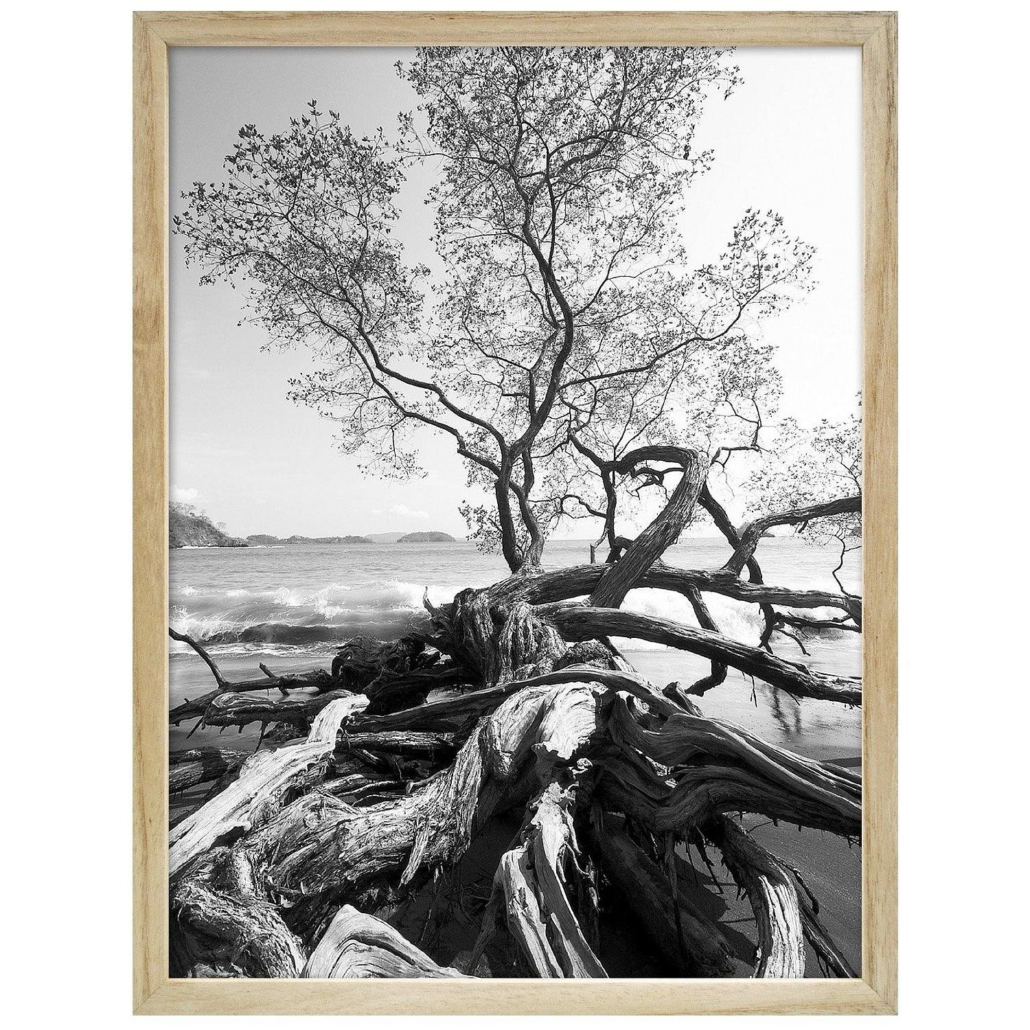 """MCS Art Shadow Box Series, Solid Wood Picture Frame, With 13/16"""" Width And 1 3/4 Depth Molding, For a 30x40"""" Photograph, Color: Natural."""