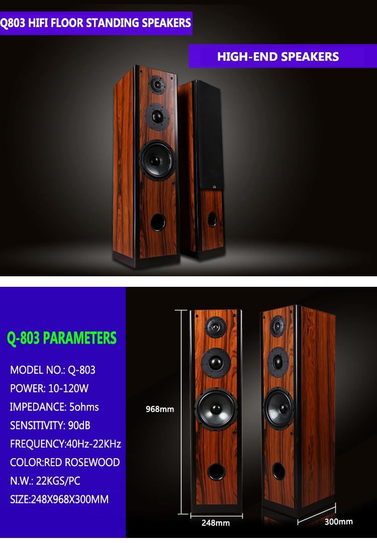 Popular Classical Design Hi Fi Floor Standing Speakers For Home Pc Speaker System Theatre Tower Q