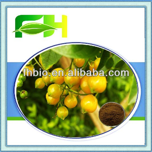 Best Quality Forsythia Fructus Extract