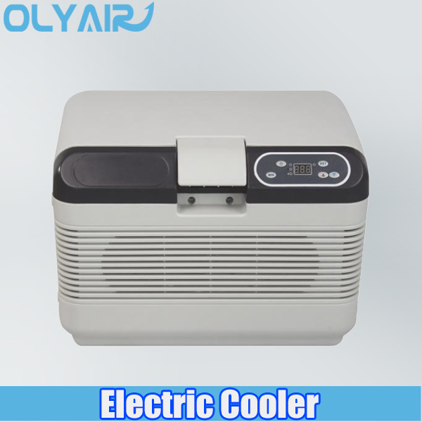 OLYAIR 12L outdoor electric cooler DC/AC auto-switch thermoelectric cooler AQ12L