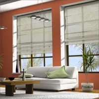 2014 China top sell automatic roman style window blinds /roman shade accessories / curtains by NOVO factory