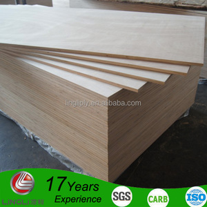 Hot sale Philippines market both-side sanded 18mm bintangor plywood