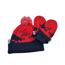 Wholesale popular personalized womens winter knitted gloves