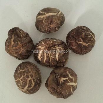 Dried Flower Shiitake Mushroom Spores Buy Shiitake Mushroom