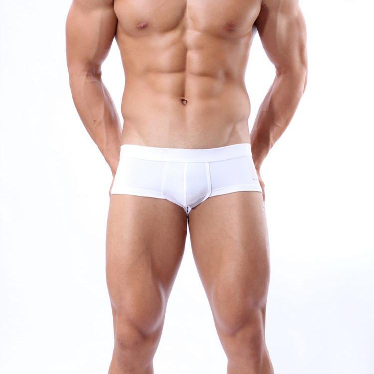 High Quality Underwear Sheer Boxer Shorts For Men Fat Man Boxer Gay Sexy Buy Sheer Boxer Shorts For Menhot Men Sexy Underwear Boxersfat Man Boxer Gay