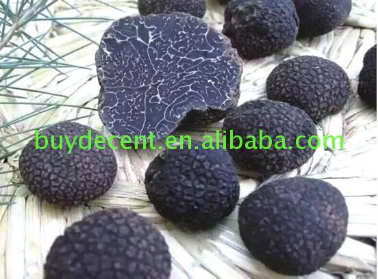 Market price anti-cancer wild energy supplement black mushroon Supply good after-sales service