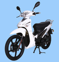 EEC approved electric motorcycle for transportation (STAR1000)