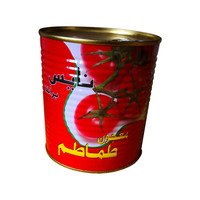 Xinjiang Halal canned organic food tomato paste 800g