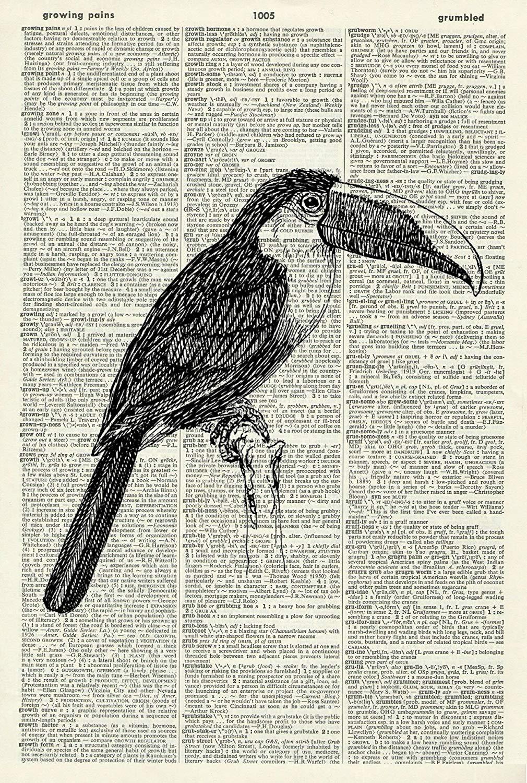 Toucan Art Print – Animal Art Print – Room Decor - Vintage Art Print - Bird Illustration - Picture - Vintage Dictionary Art Print - Wall Hanging - Book Print – Nursery Wall Art 1234D