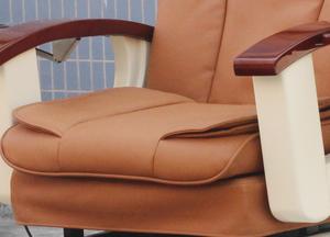 Pedicure Stoel Tweedehands : Spa ashbury pedicure chair for sale spa ashbury pedicure chair for